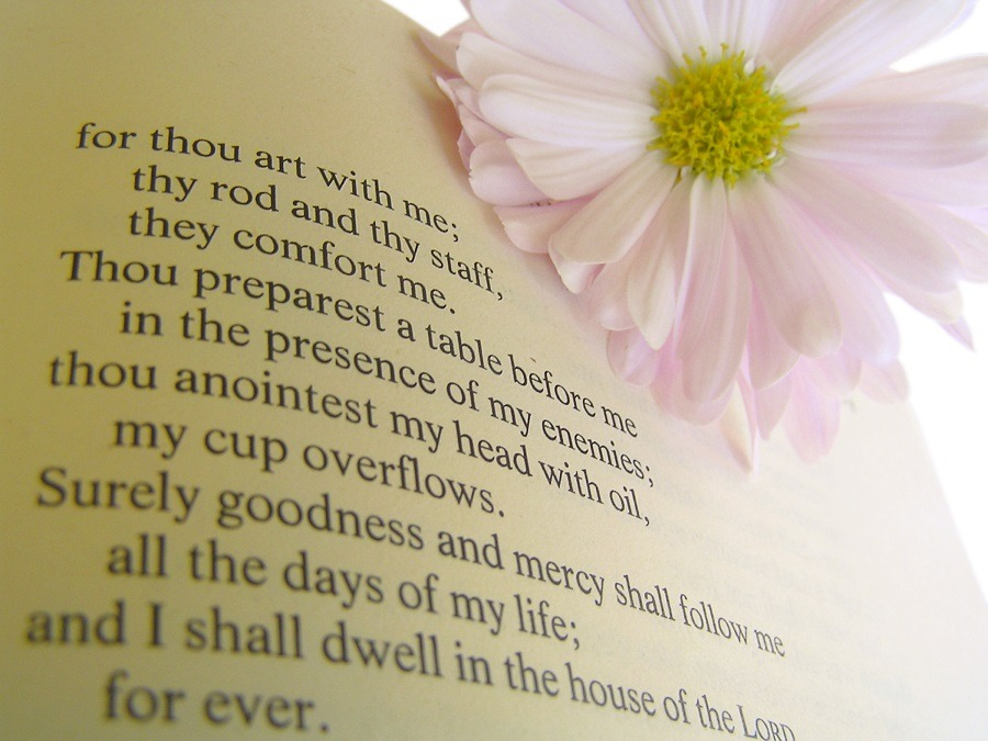 A well known psalm on a page in the Christian Bible.