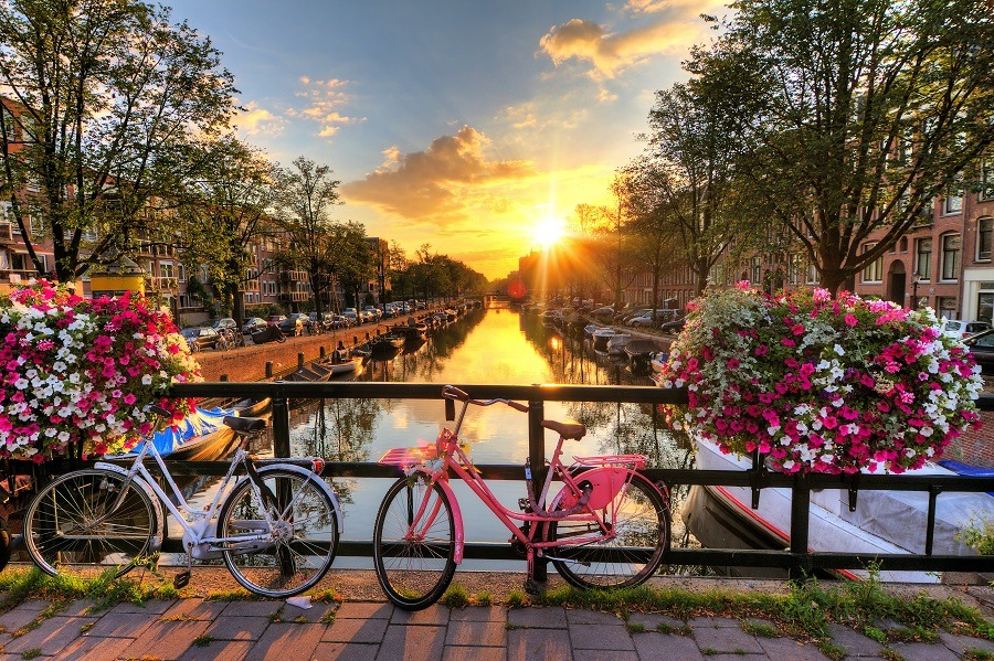 Beautiful sunrise over Amsterdam, The Netherlands, with flowers and bicycles on the bridge in spring.