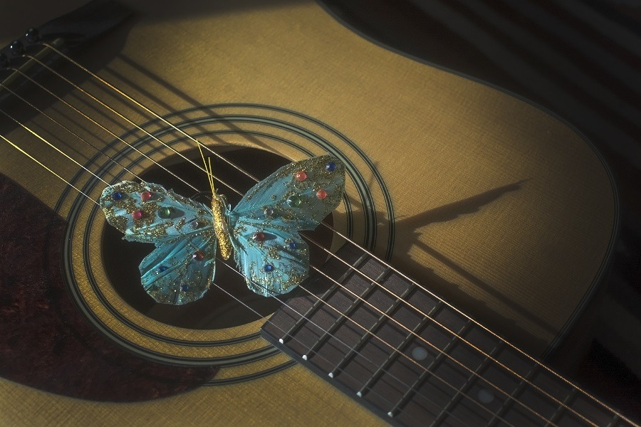 Turquoise butterfly atop strings of acoustic guitar.