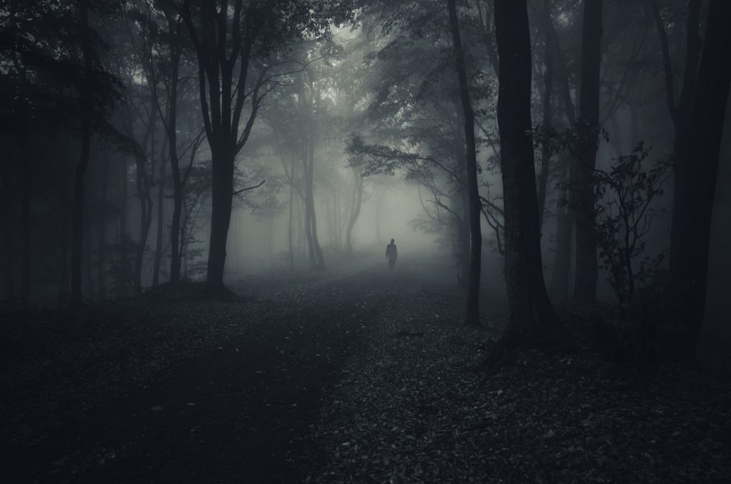 Dark woods with a lonesome man walking on a foggy path.