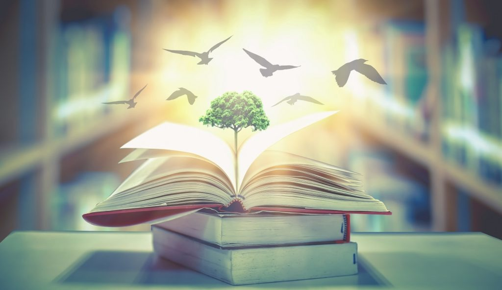A tree growing from a book signifying knowledge and education for a bright future.