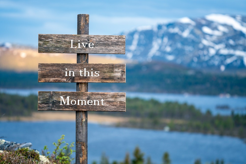 Live in this moment text on wooden signpost outdoors in landscape scenery.