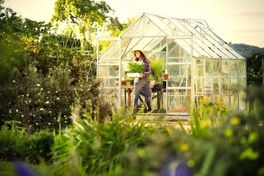 A young woman gardening in a greenhouse.