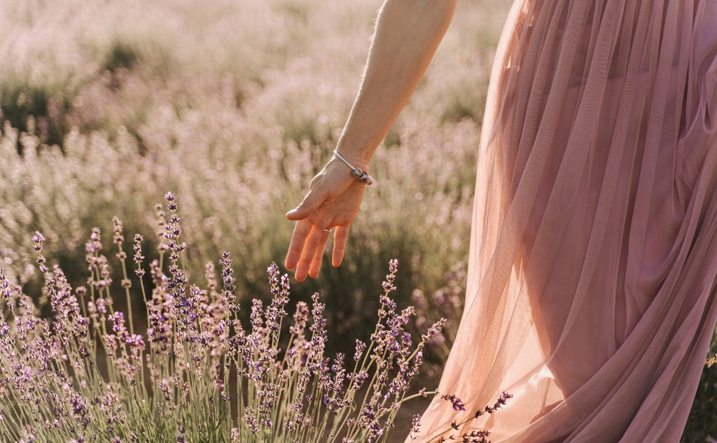 Woman hand touching lavender bushes on sunny day