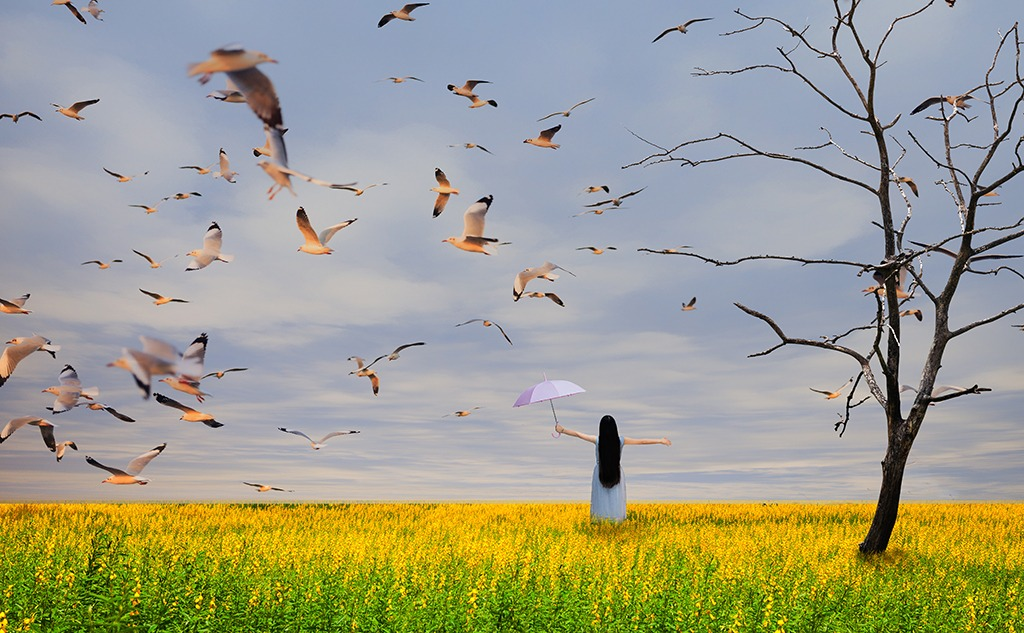 Girl standing with umbrella on flower field