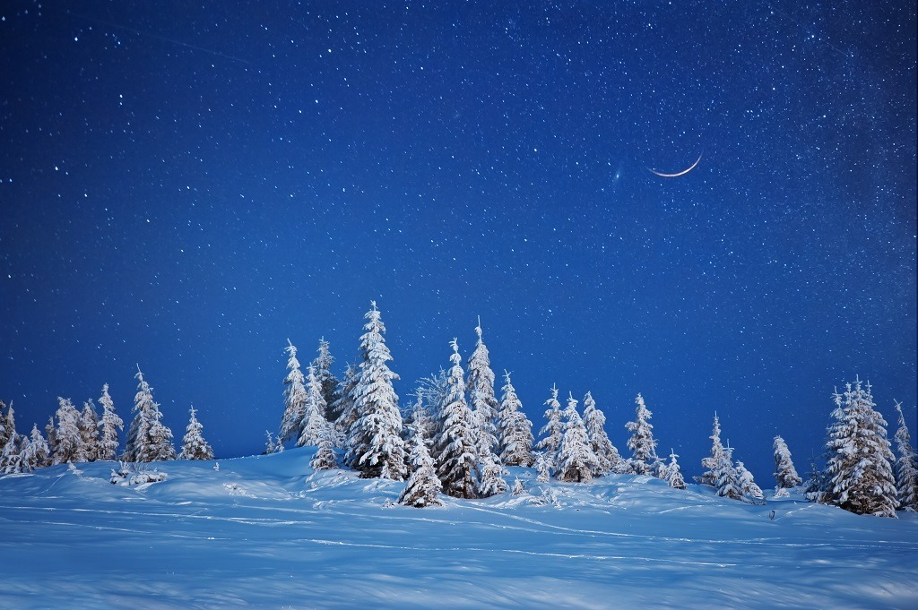 Pine trees on snowy mountain under the bright evening sky with white crescent moon.
