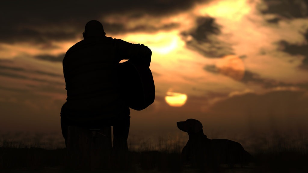 Guitarist sitting in the sunset with his dog while playing his guitar.