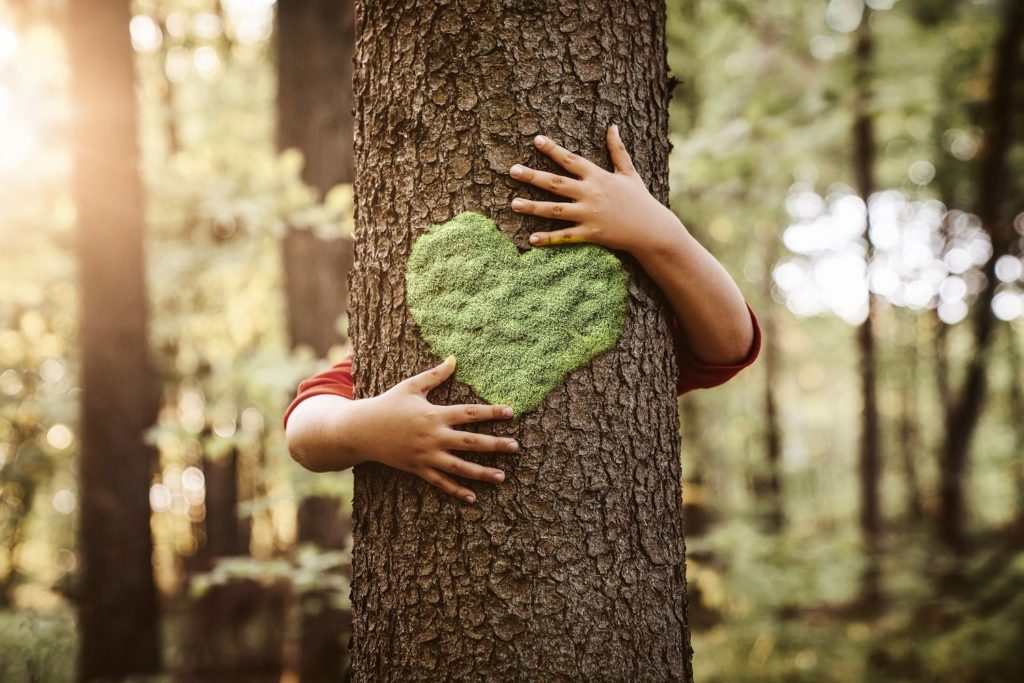 Close up of child's hands hugging a tree from behind.