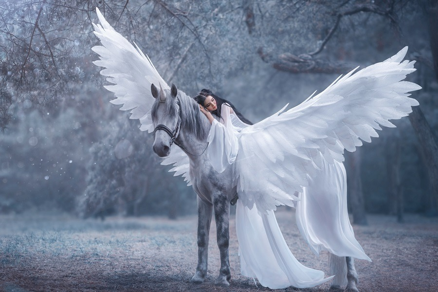 Beautiful, young woman dressed in white walking with a white winged horse.