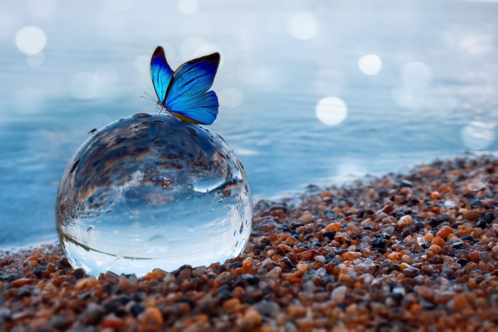 Butterfly on a glass ball on the beach reflecting the lake and sky