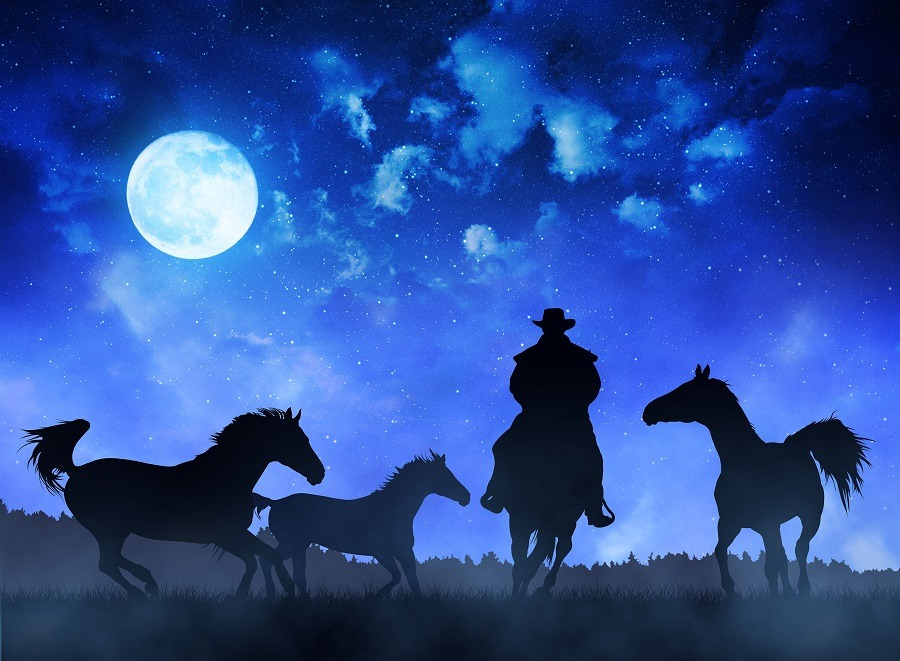 Silhouette cowboy with horses, blue night sky and night in the background.