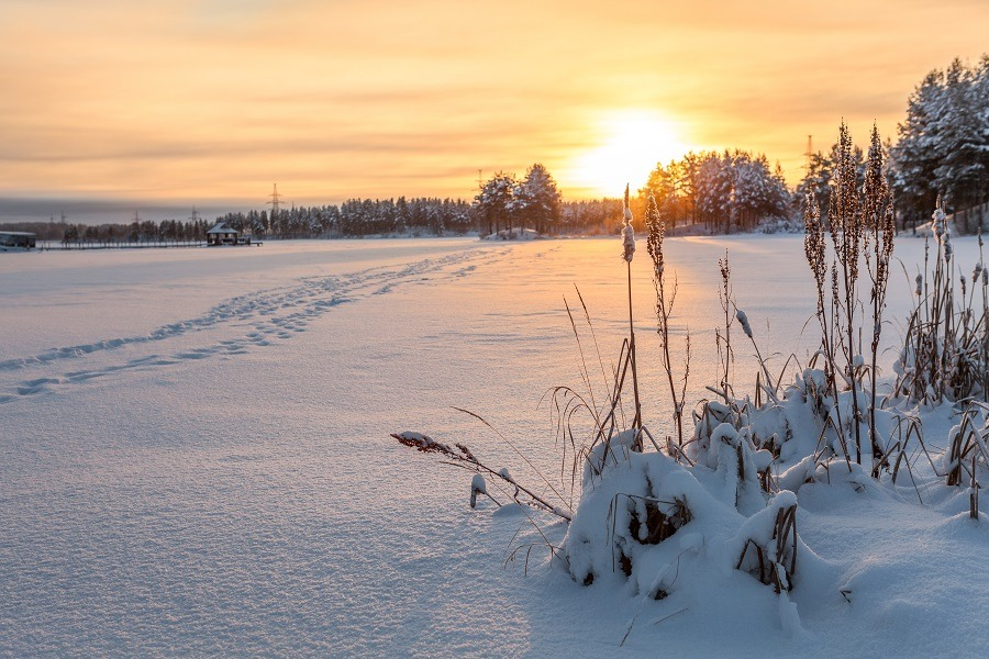 Winter lake shore under ice and snow at sunset light, footsteps on snowy surface.