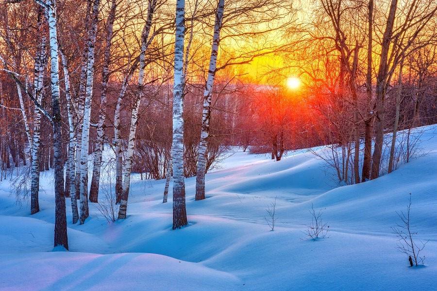 Colorful winter sunset.